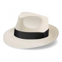 Sinatra logo